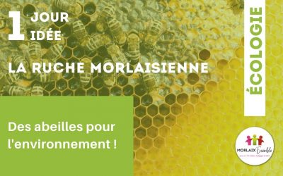 La ruche morlaisienne